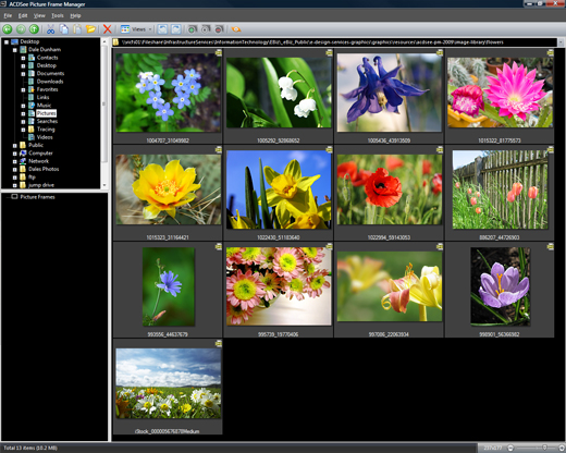 ACDSee Picture Frame Manager screen shot