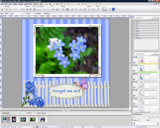 ACDSee Photo Editor 2008 screen shot